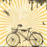 Retro Bicycle Stock Photography