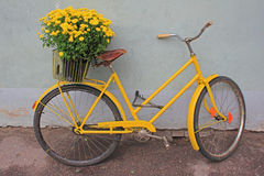 Retro bike  with flowers Stock Photos