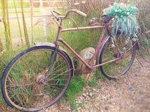 Retro bike. Vintage Bike. Thailand stock photography
