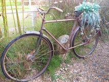 Retro bike. Vintage Bike. Thailand royalty free stock photos