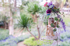 Retro birdcage with beautiful flowers in garden Stock Photos