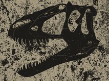 Retro black sketch of section of skull of tyrannosaur in rock stock photos