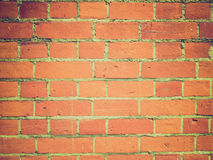 Retro- Blick rote Backsteine Stockbilder