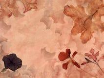 Retro bloemenachtergrond Royalty-vrije Stock Foto's