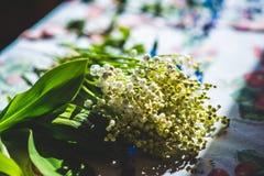 Retro blommor Arkivfoto