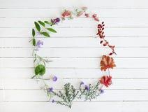 Retro- Blumenrahmen auf weißem hölzernem Hintergrund Lizenzfreie Stockbilder