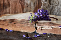 Retro book on wooden table key Stock Image