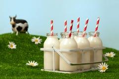 Retro bottiglie per il latte Immagine Stock