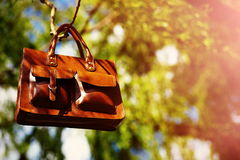 Retro brown  man leather bag  in bright colorful summer park Royalty Free Stock Image
