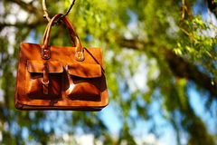 Retro brown man leather bag and notebook in bright colorful summer grass. In the park stock photo