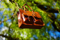 Retro brown  man leather bag and notebook in bright colorful summer grass Stock Images