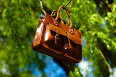 Retro brown  man leather bag and notebook in bright colorful summer grass Royalty Free Stock Photo