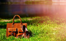 Retro brown shoes and man leather bag in bright colorful summer grass. In the park stock photography