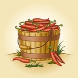Retro bucket of chili peppers. In woodcut style. Editable vector illustration with clipping mask Stock Photos