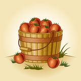 Retro bucket of tomatoes Royalty Free Stock Photo
