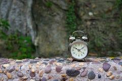 Retro budzik na kamieniu i roślinie Obrazy Royalty Free
