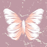 Retro butterfly Stock Photography