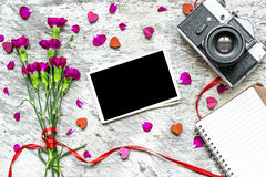 Retro camera and blank photo frame with purple carnation flowers Royalty Free Stock Images
