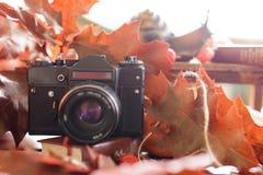 Retro camera in de herfst met heldere rode bladeren op een houten tabl Royalty-vrije Stock Foto's