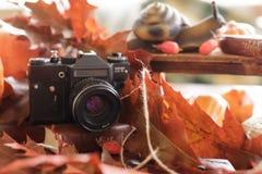 Retro camera in de herfst met heldere rode bladeren op een houten tabl Stock Afbeelding