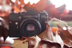Retro camera in de herfst met heldere rode bladeren op een houten tabl Royalty-vrije Stock Fotografie