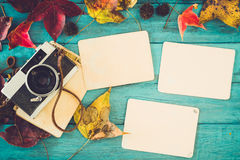 Retro camera and empty old instant paper photo album on wood table with maple leaves in autumn Stock Photo