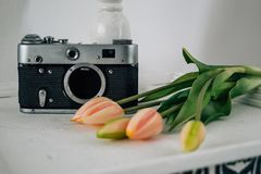 Retro camera with flowers in white room royalty free stock photo
