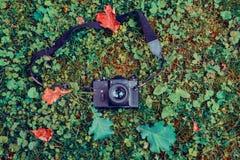 Retro camera on the grass in the autumn park. Old fashioned retro photocamera on the grass in the autumn park Stock Image