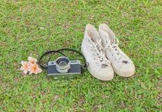 Retro camerar en tennisschoenen op het gras Warme tonen Royalty-vrije Stock Foto