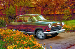 Retro car. Near  a flowerbed Royalty Free Stock Photos