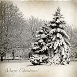 Retro card with Christmas, winter landscape Royalty Free Stock Image