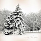 Retro card with Merry Christmas, trees and Christmas trees in sn Royalty Free Stock Photography