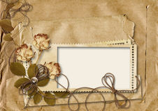 retro card with rose on torn paper background Stock Photos