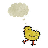 retro cartoon baby chick with thought bubble Royalty Free Stock Photo