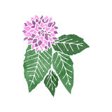 Retro cartoon flower and leaves Royalty Free Stock Photos