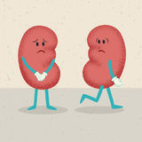 Retro cartoon of 2 kidneys Stock Photo