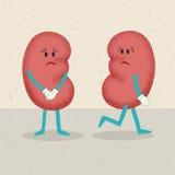 Retro cartoon of 2 kidneys Stock Photo