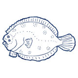 Retro cartoon line drawing kipper Royalty Free Stock Photo