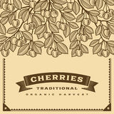 Retro cherry harvest card brown Royalty Free Stock Photography