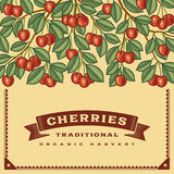 Retro cherry harvest card Royalty Free Stock Photography