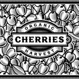 Retro Cherry Harvest Label Black And White Royalty Free Stock Photo