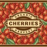 Retro Cherry Harvest Label Stock Images
