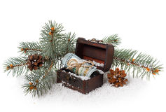 Retro chest of bills, a branch of fir tree and cones Stock Photography