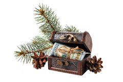 Retro chest with dollar bills, pine branches and cones isolated on white background. Christmas Royalty Free Stock Photo
