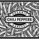 Retro Chili Pepper Harvest Label Black e bianco Immagine Stock Libera da Diritti