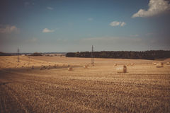 Retro color of straw bales in harvested fields Royalty Free Stock Photography