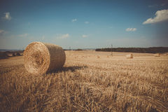 Retro color of straw bales in harvested fields Royalty Free Stock Images