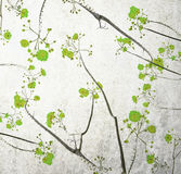 Retro color tone of flower branch with grunge background Stock Photo