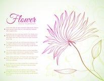 Retro concetto del fondo del fiore Vettore Fotografia Stock