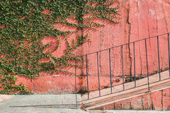 Retro concrete wall with climber tree and ramp Stock Photography